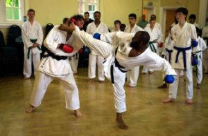 Wado Ryu UK National Squad Training at Farnham in 2011