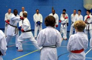 Wayne Otto OBE - Wado Ryu Karate world champion