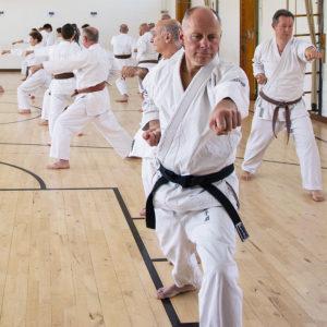 Wado-Ryu Karate Do Ju-Jutsu Kempo beginners karate classes in Aldershot, Farnham, Guildford & Haslemere
