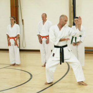 Wado-Ryu Karate Do Ju-Jutsu Kempo kids karate classes in Aldershot, Farnham, Guildford & Haslemere