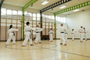 Guilford Karate Academy September 2017
