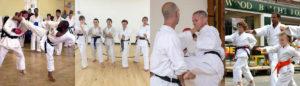 About Surrey Karate Academy Club